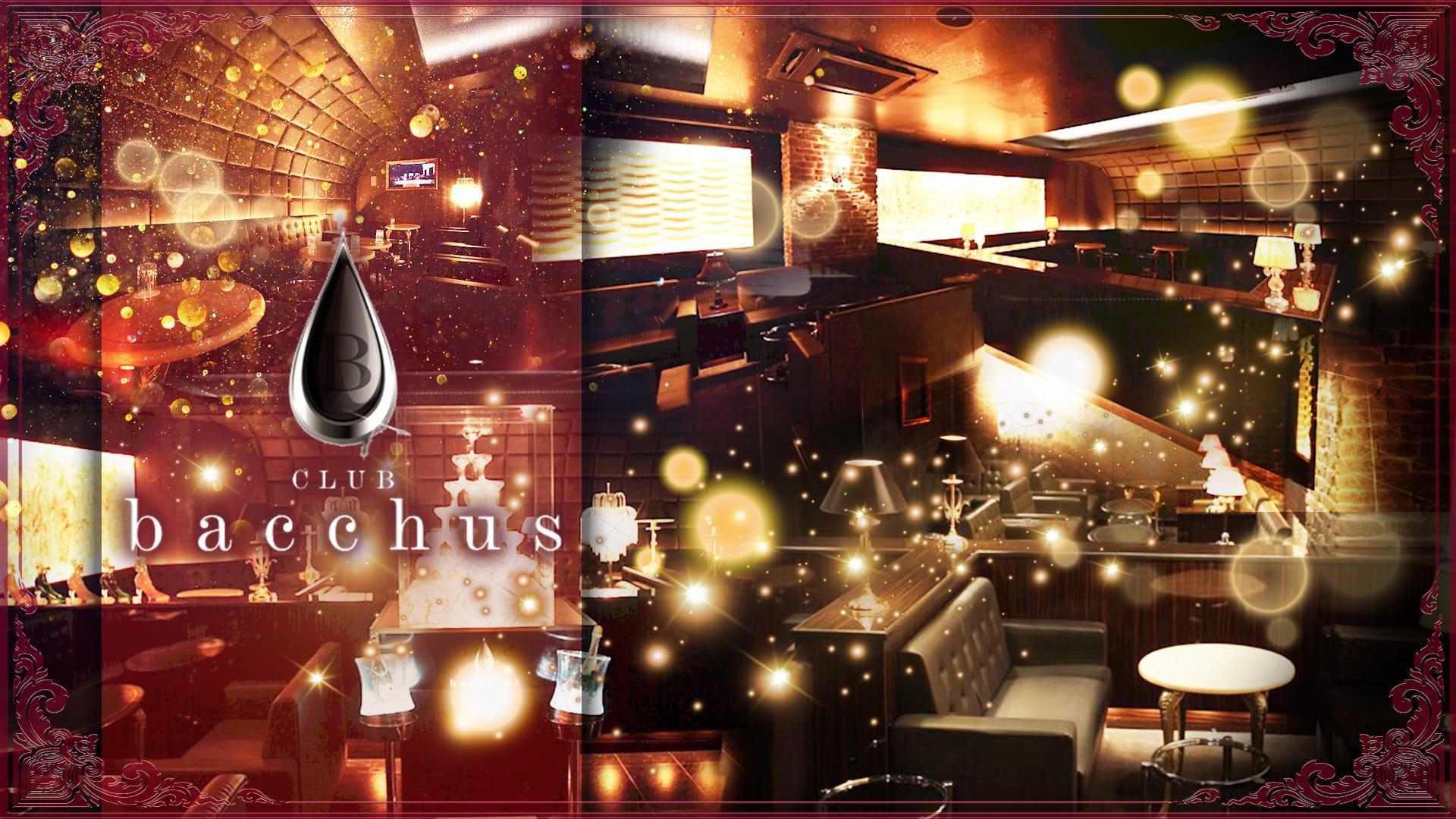 CLUB bacchus (クラブ バッカス)【公式求人・体入情報】 片町キャバクラ TOP画像