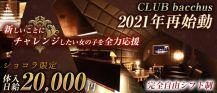 CLUB bacchus (クラブ バッカス)【公式求人・体入情報】 バナー