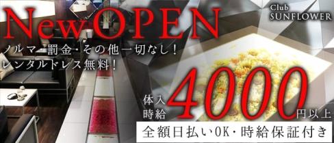 Club SUNFLOWER(サンフラワー)【公式求人情報】(上福岡キャバクラ)の求人・バイト・体験入店情報