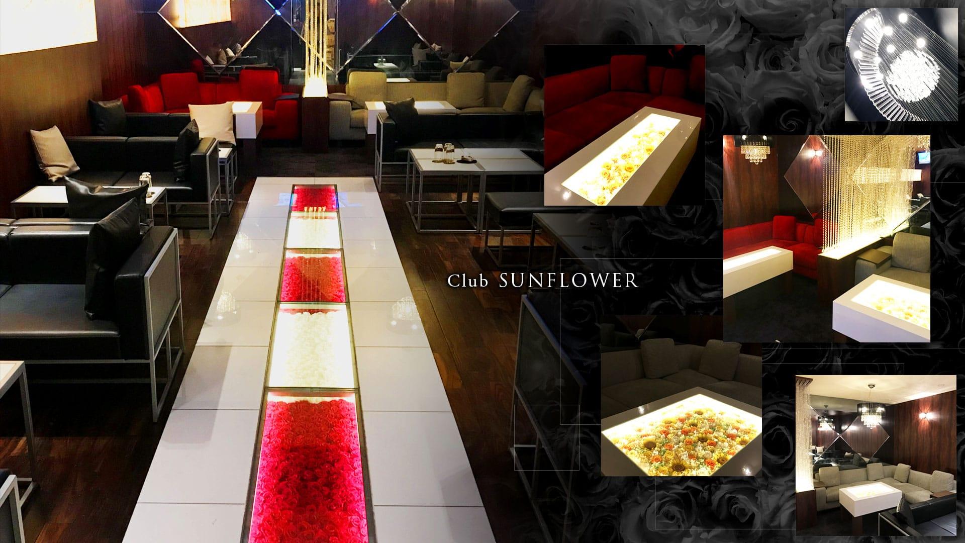 Club SUNFLOWER(サンフラワー) TOP画像