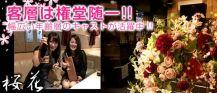 桜花(おうか)【公式求人情報】 バナー