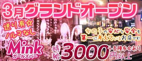 Girl's Bar MINK(ガールズバーミンク)【公式求人情報】(八王子ガールズバー)の求人・バイト・体験入店情報