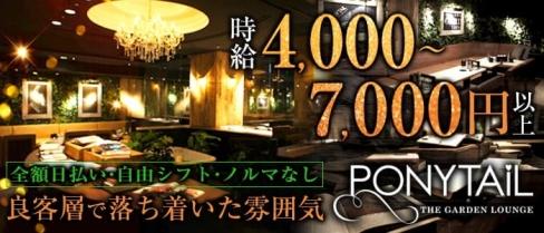 PONYTAIL-ポニーテールミナミ-【公式】(難波キャバクラ)の求人・バイト・体験入店情報
