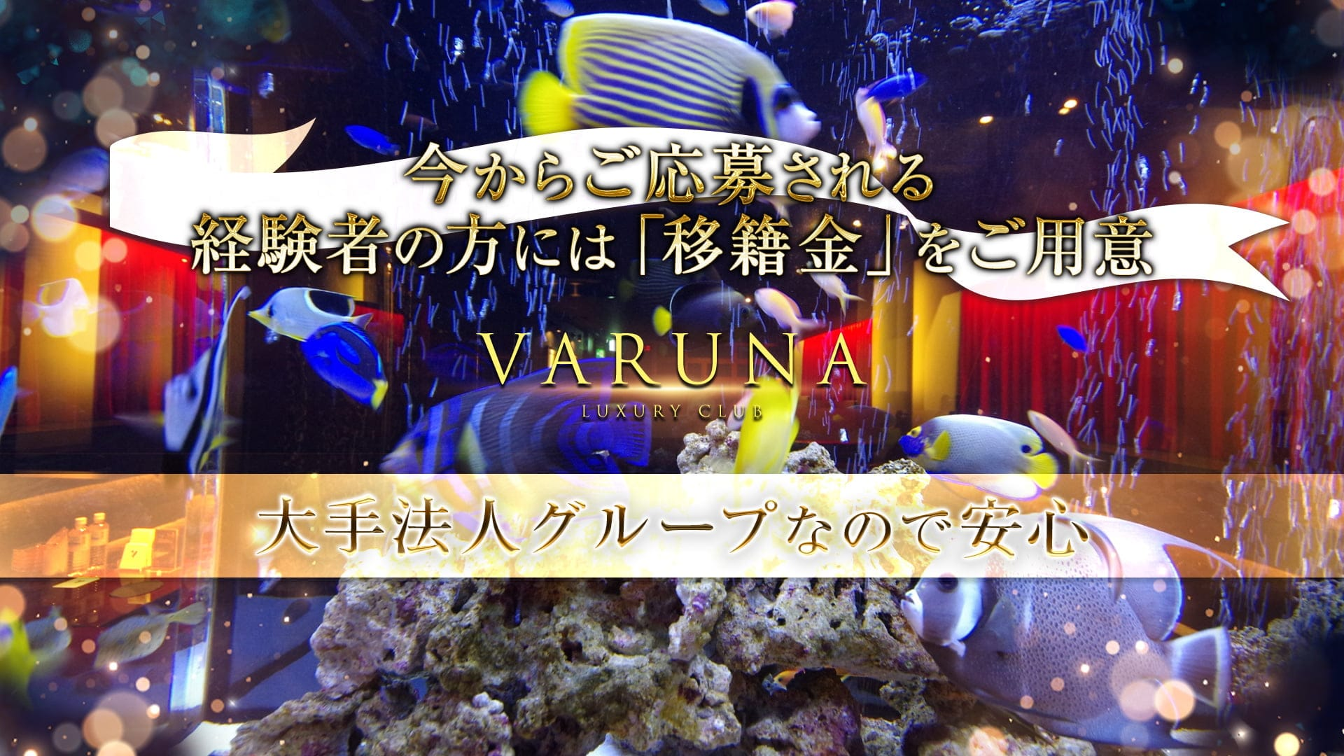 VARUNA(ヴァルナ)【公式求人・体入情報】 甲府キャバクラ TOP画像