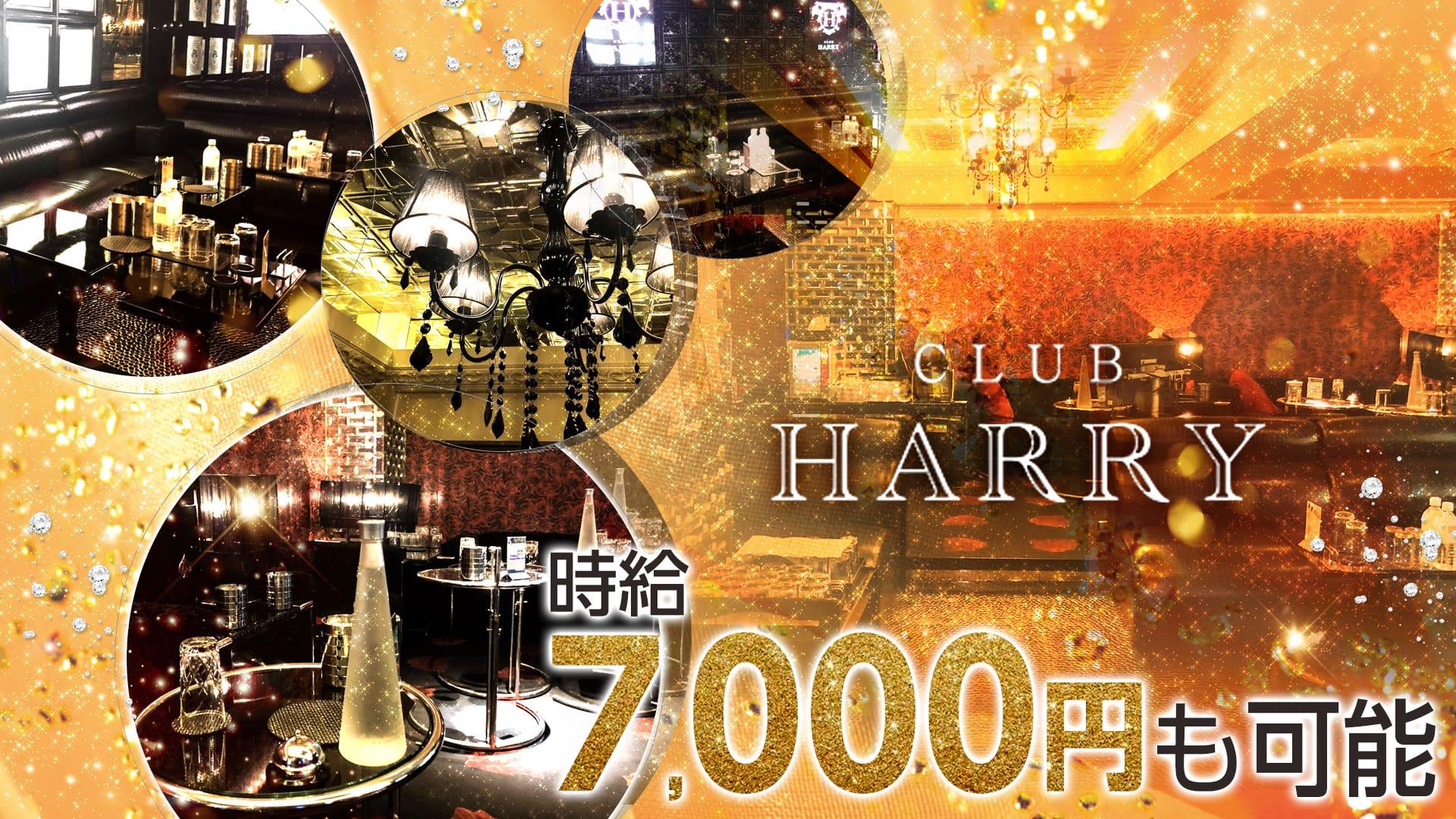 CLUB HARRY(クラブ ハリー) 上野キャバクラ TOP画像
