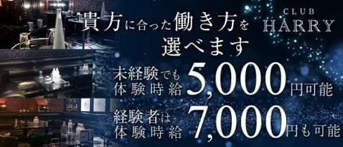 CLUB HARRY(クラブ ハリー)【公式求人情報】(上野キャバクラ)の求人・バイト・体験入店情報