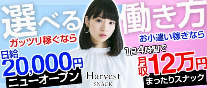 Harvest (ハーヴェスト)【公式求人情報】