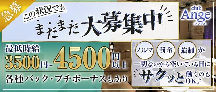【大泉学園】New Club Ange(アンジュ)【公式求人・体入情報】 練馬キャバクラ バナー