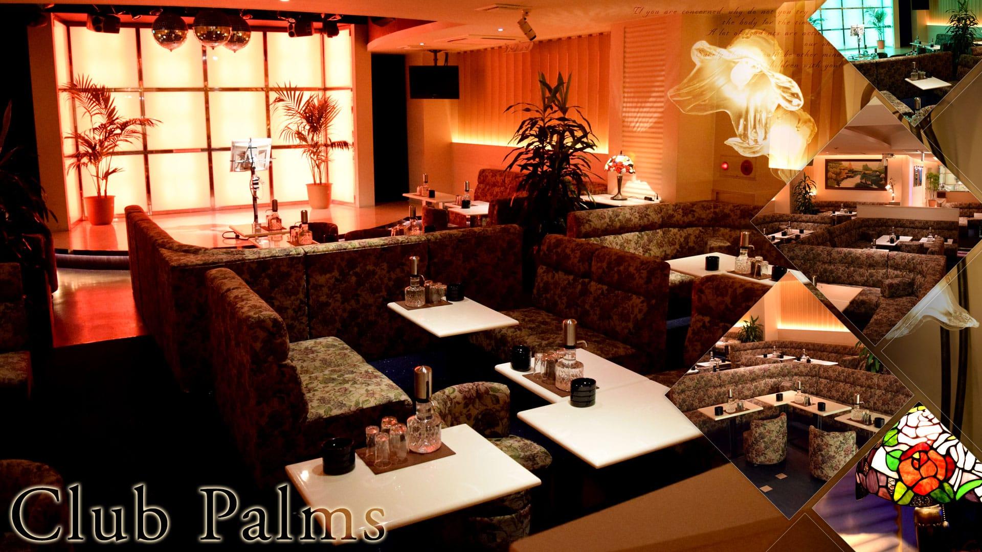 Club Palms(パームス) TOP画像