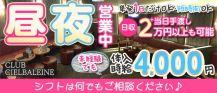 【昼・夜】CLUB CIELBALEINE(シエルバレーヌ)【公式求人・体入情報】 バナー