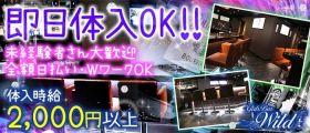 Girl's Bar WILD -ワイルド- 錦糸町ガールズバー 即日体入募集バナー