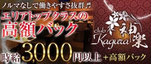 club 神楽(カグラ)【公式求人情報】(古町キャバクラ)の求人・バイト・体験入店情報