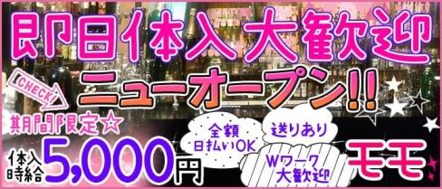 モモ【公式求人情報】(歌舞伎町ガールズバー)の求人・バイト・体験入店情報