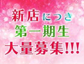 Girls Bar Elmo(ガールズバーエルモ) 赤坂ガールズバー SHOP GALLERY 2