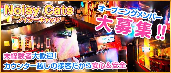 Noisy Cats(ノイジーキャッツ) 上野ガールズバー バナー