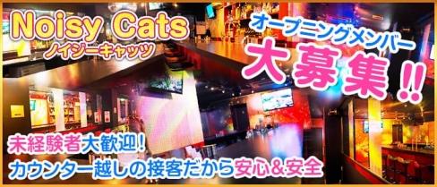Noisy Cats(ノイジーキャッツ)【公式求人情報】(上野ガールズバー)の求人・バイト・体験入店情報