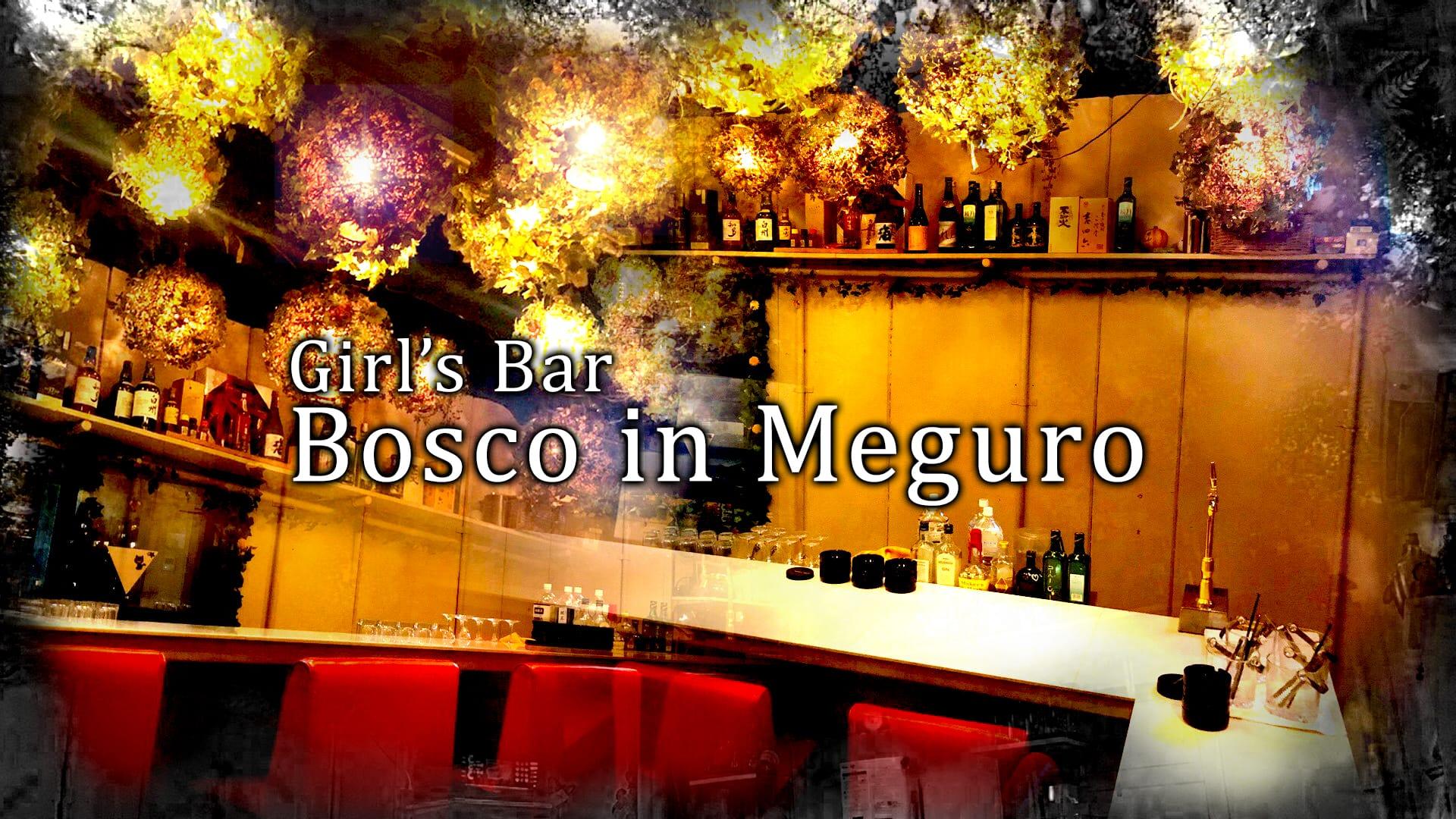 Girl's Bar Bosco in Meguro(ボスコインメグロ) TOP画像