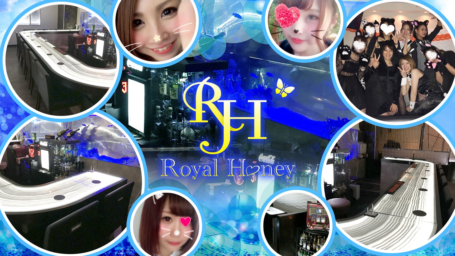 ROYAL HONEY(ロイヤルハニー) TOP画像