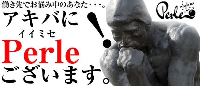 PERLE(ペルル) 秋葉原ガールズバー バナー