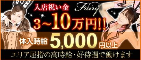 club fairy~フェアリー~【公式求人情報】(藤枝キャバクラ)の求人・体験入店情報