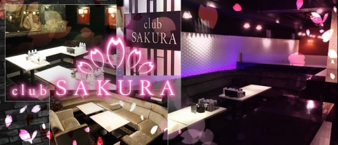 Club SAKURA(サクラ)【公式求人情報】(京橋キャバクラ)の求人・バイト・体験入店情報