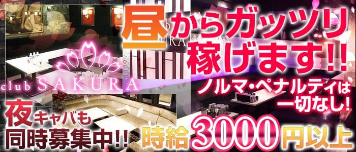 Club SAKURA(サクラ) 京橋昼キャバ・朝キャバ バナー