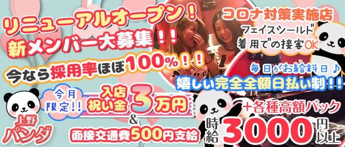 Girl's Bar 上野パンダ 上野ガールズバー バナー