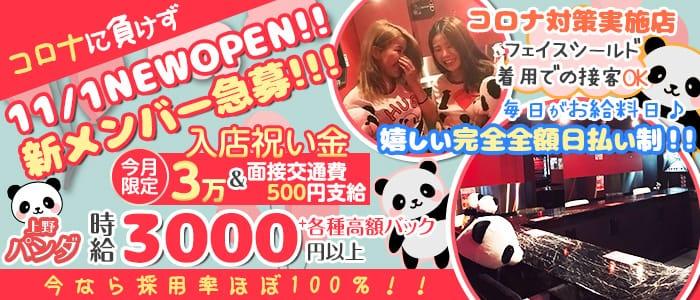 Girl's Bar 上野パンダ【公式求人・体入情報】 上野ガールズバー バナー