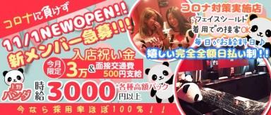 Girl's Bar 上野パンダ【公式求人・体入情報】(上野ガールズバー)の求人・バイト・体験入店情報