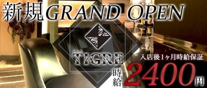 CLUB TIGRE~クラブティグル~【公式求人情報】