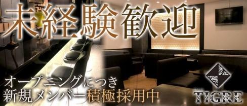 CLUB TIGRE~クラブティグル~【公式求人情報】(沼津キャバクラ)の求人・バイト・体験入店情報