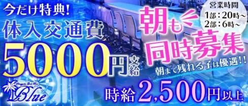 Girl's Bar Blue(ブルー)【公式求人情報】(歌舞伎町ガールズバー)の求人・バイト・体験入店情報