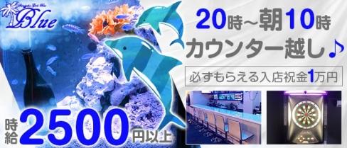 【朝・夜】Girl's Bar Blue(ブルー)【公式求人情報】(歌舞伎町ガールズバー)の求人・バイト・体験入店情報