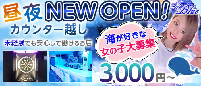 【昼・夜】Girl's Bar Blue(ブルー)【公式求人・体入情報】 歌舞伎町ガールズバー バナー