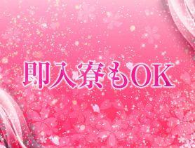 ONE TOKYO桜花(おうか) 八戸キャバクラ SHOP GALLERY 1