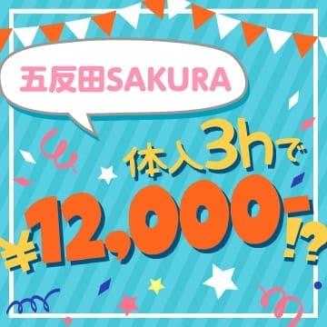 ≪五反田エリア大人気!!ガールズバーSAKURAです!≫