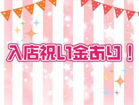 Girl's Bar SWAN(スワン) 片町ガールズバー SHOP GALLERY 3