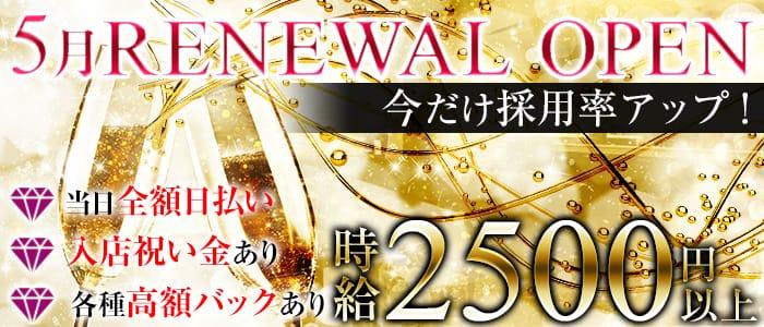 Girl's Bar SWAN(スワン) 片町ガールズバー バナー