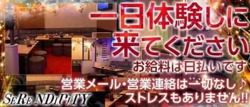 SeReNDiPiTY~セレンディピティ~【公式求人情報】(難波ラウンジ)の求人・バイト・体験入店情報