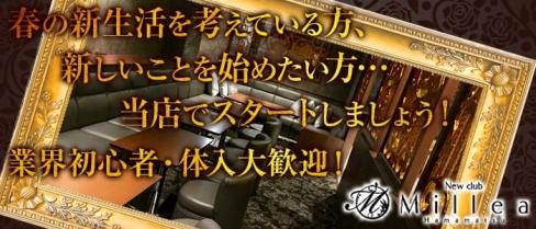 New club Millea~ミレア~【公式求人情報】(浜松キャバクラ)の求人・バイト・体験入店情報