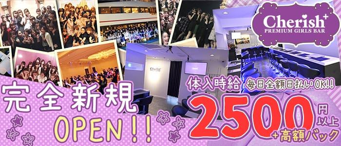 チェリッシュ3号店(PREMIUM GIRLS BAR Cherish+)【公式求人・体入情報】 池袋ガールズバー バナー