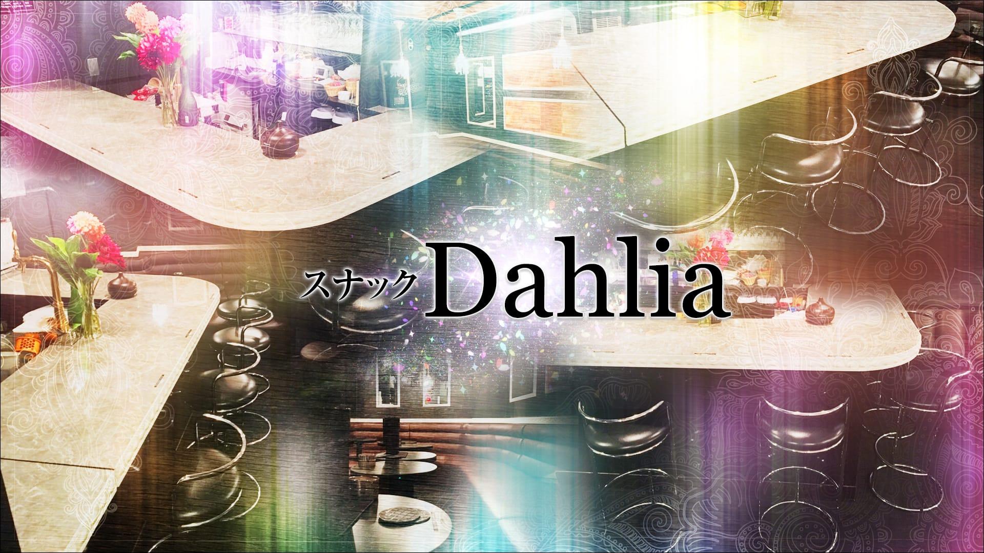スナック Dahlia(ダリア) 神田スナック TOP画像