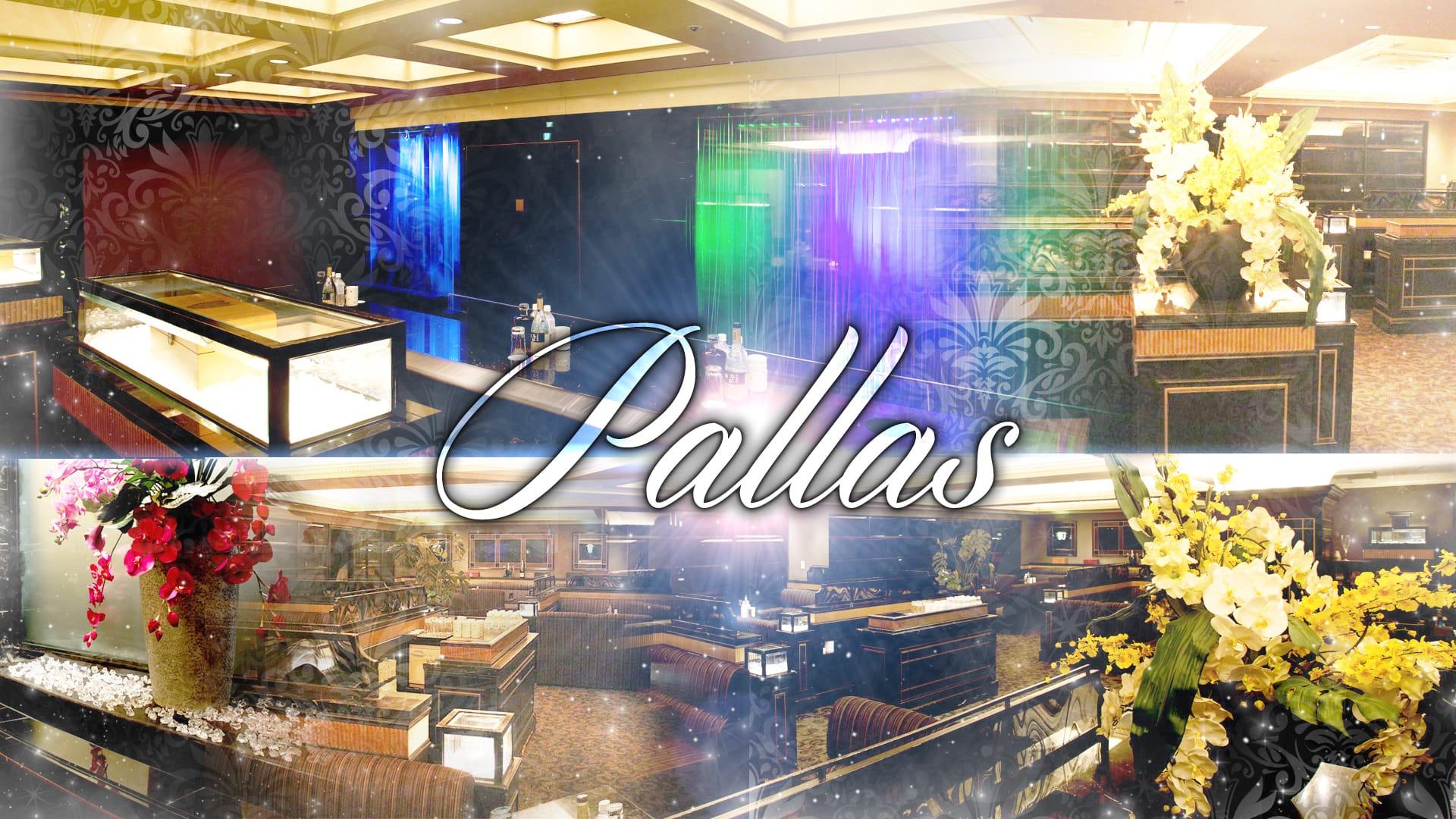 Pallas(パラス) 難波キャバクラ TOP画像