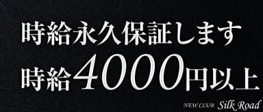 new club Silk Road(シルクロード)【公式求人情報】(柏キャバクラ)の求人・バイト・体験入店情報