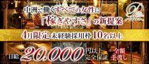 PLUTO(プルート)【公式求人・体入情報】 バナー