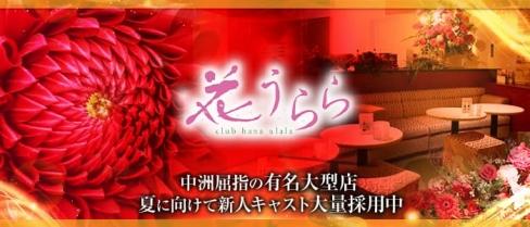 花うらら【公式求人情報】(中洲キャバクラ)の求人・バイト・体験入店情報
