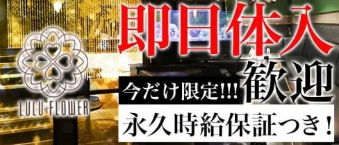 LULU FLOWER(ルルフラワー)【公式求人情報】(川口キャバクラ)の求人・バイト・体験入店情報
