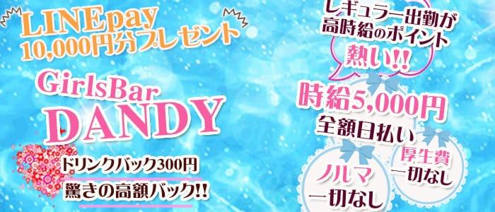 ダンディ【公式求人・体入情報】 吉祥寺ガールズバー バナー