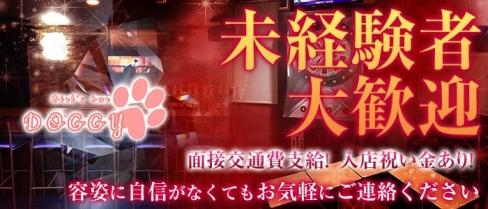 girl's bar DOGGY(ドギー)【公式求人情報】(錦糸町ガールズバー)の求人・バイト・体験入店情報