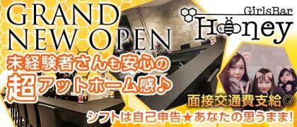 Girl's Bar HONEY(ハニー)【公式求人情報】(小岩ガールズバー)の求人・バイト・体験入店情報